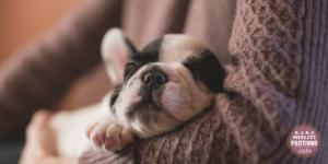 kako-zaspati-bez-tableta